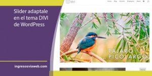 Añadir deslizador de diapositivas en DIVI adaptable