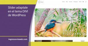 Deslizador de diapositivas o Slider responsive en DIVI