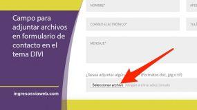 Adjuntar archivos a formulario en Divi