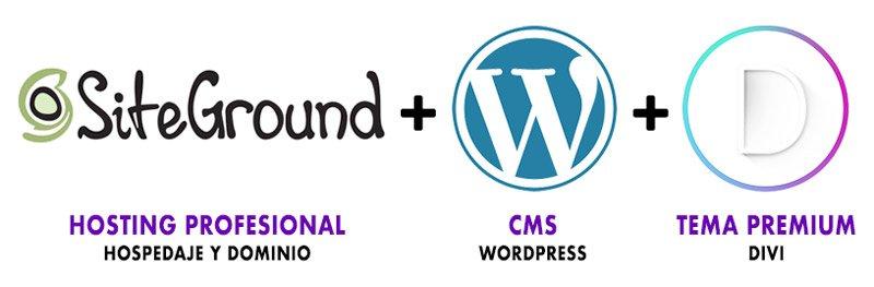 Página web profesional con WordPress y Divi